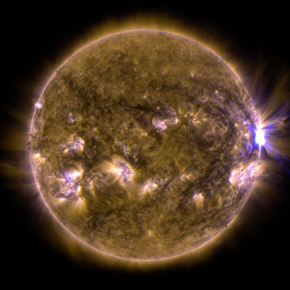 MSU researcher part of team that discovers the sun has seasons