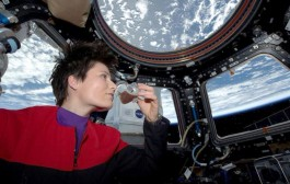 Astronaut Samantha Cristoforetti , IZ0UDF, Sets New Record for Woman in Space