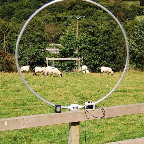 Stealth Antennas [ PodCast ] – Everything Ham Radio